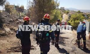 Φωτιά ΤΩΡΑ: Υπό μερικό έλεγχο τα μέτωπα σε Μαρκόπουλο, Μέγαρα και Καστρίτσα Ιωαννίνων