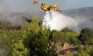 Πυρκαγιές στην Πορτογαλία: Πάνω από 1.700 πυροσβέστες στη «μάχη» με τις φλόγες – 20 τραυματίες