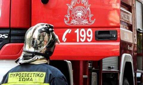 Φωτιά ΤΩΡΑ: Μεγάλη πυρκαγιά στη Μεγαλόπολη