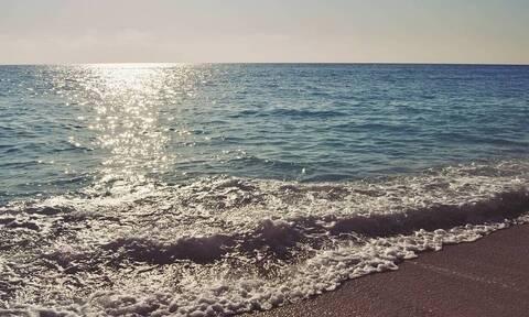 Φρίκη σε παραλία: Δεν πίστευαν στα μάτια τους με αυτό που είδαν – Ήταν όλες νεκρές… (pics)