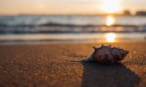 Εσύ βλέπεις την παραλία; Η ψευδαίσθηση που έχει μπερδέψει όλο το Διαδίκτυο (pics)