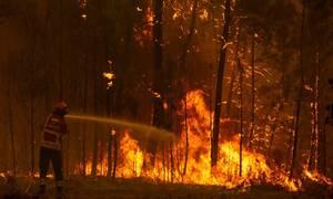 Αναζωπυρώθηκαν οι πυρκαγιές στην Πορτογαλία