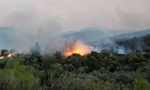 Φωτιά ΤΩΡΑ στη Ζάκυνθο