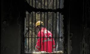Ένας χρόνος από την τραγωδία στην Ανατολική Αττική - Ο απολογισμός του Ελληνικού Ερυθρού Σταυρού