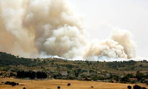 Φωτιά ΤΩΡΑ: Πύρινη κόλαση στην Τανάγρα - Ενισχύονται οι πυροσβεστικές δυνάμεις