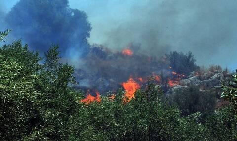 Φωτιά ΤΩΡΑ στο Ηράκλειο Κρήτης