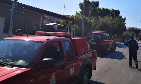 Αγρίνιο: Άντρας απείλησε με τσεκούρι πυροσβέστες που πήγαν να σβήσουν φωτιά στο σπίτι του