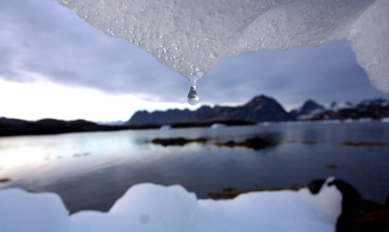 Παγκόσμια ανησυχία: Η Γη κινδυνεύει – Ακραίες θερμοκρασίες με τρομακτικές συνέπειες για τον πλανήτη
