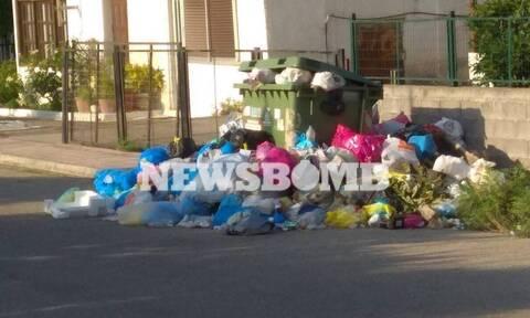 Υγειονομική βόμβα στο Αίγιο: 10.000 τόνοι σκουπιδιών πνίγουν την πόλη