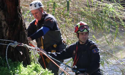 Αγωνία για ορειβάτη που εγκλωβίστηκε στον Όλυμπο - Μεγάλη επιχείρηση της Πυροσβεστικής