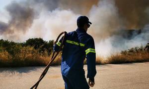 Υπό έλεγχο οι φωτιές σε Κορωπί και Ωρωπό