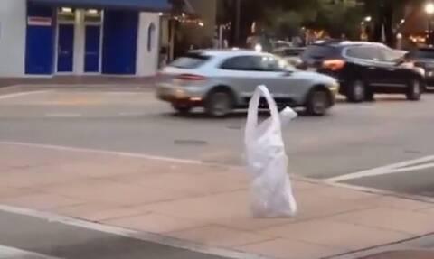 Πλαστική σακούλα «περπατάει» στον δρόμο; Αλήθεια ή ψευδαίσθηση; (vid)