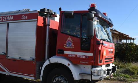 Φωτιά ΤΩΡΑ: Μεγάλη πυρκαγιά στην Βοιωτία