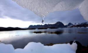 Σοκάρουν οι επιστήμονες: «Έχουμε 18 μήνες για να σώσουμε τον πλανήτη αλλιώς...»
