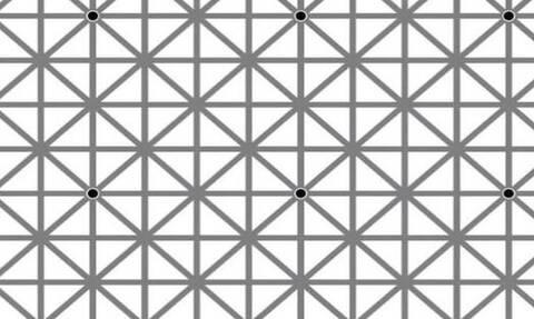 Σε αυτή τη φωτογραφία υπάρχουν δώδεκα μαύρες κουκίδες! Δεν θα τις δείτε ποτέ όλες μαζί... (photo)
