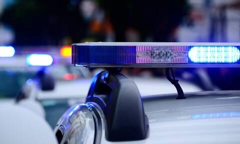 Αυτοί είναι οι νέοι τετράποδοι αστυνομικοί στην υπηρεσία ανίχνευσης εκρηκτικών