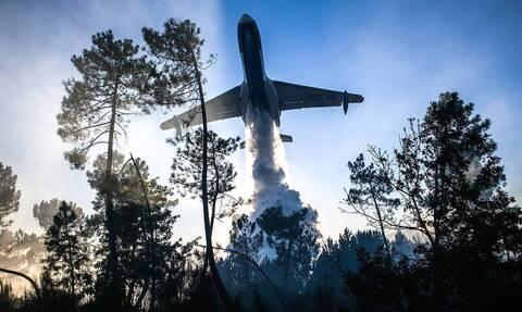 Авиация МЧС приступила к тушению лесных пожаров в Красноярском крае