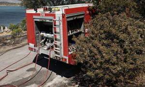 Συναγερμός στην Πυροσβεστική: Φωτιά στην Κηφισιά
