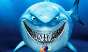 Είναι αλήθεια πως οι καρχαρίες μυρίζουν το αίμα;