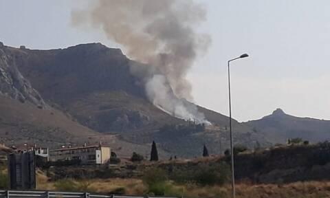 Φωτιά ΤΩΡΑ στην Κόρινθο: Υπό μερικό έλεγχο η πυρκαγιά στην Αρχαία Κορινθία