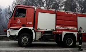 Φθιώτιδα: Συναγερμός στην Πυροσβεστική - Σπίτι τυλίχθηκε στις φλόγες