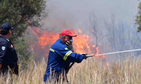 Σε ετοιμότητα ο κρατικός μηχανισμός για τον κίνδυνο πυρκαγιών – Πού θα απαγορευθεί η κυκλοφορία
