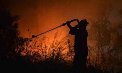 Φωτιά ΤΩΡΑ στη Λάρισα: Καλύτερη η εικόνα στην περιοχή των Φαρσάλων (ΧΑΡΤΗΣ)