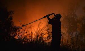 Φωτιά ΤΩΡΑ στην Ηλεία: Υπό μερικό έλεγχο οι πυρκαγιές σε Λούβρο και Ανεμοχώρι