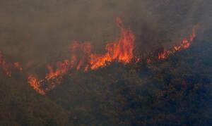 Ρέθυμνο: Υπό μερικό έλεγχο η φωτιά στην Κάλυβο Μυλοποτάμου