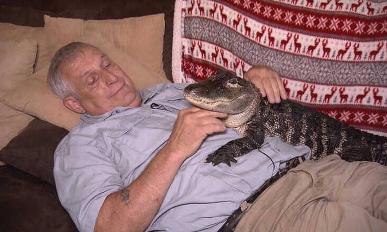 Γνωρίστε τον Wally, τον αλιγάτορα που προσφέρει... συναισθηματική στήριξη
