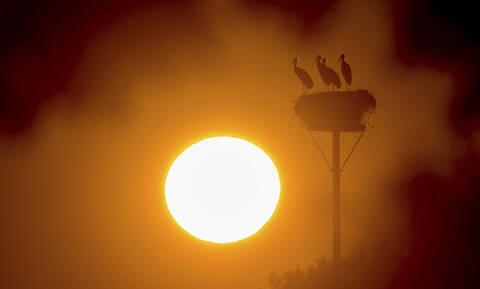 Έκτακτο δελτίο επιδείνωσης του καιρού: «Καμίνι» και πάλι η χώρα - Έρχεται κύμα καύσωνα