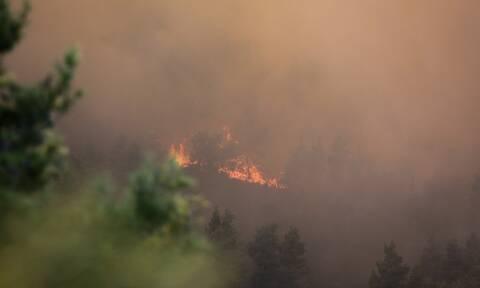Φωτιά ΤΩΡΑ: Πύρινη κόλαση στην Ελαφόνησο - Εκκενώνεται το camping