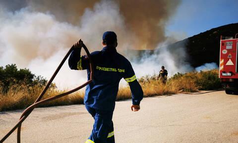Φωτιά ΤΩΡΑ: Συναγερμός στην Ελαφόνησο - Ενισχύονται οι πυροσβεστικές δυνάμεις