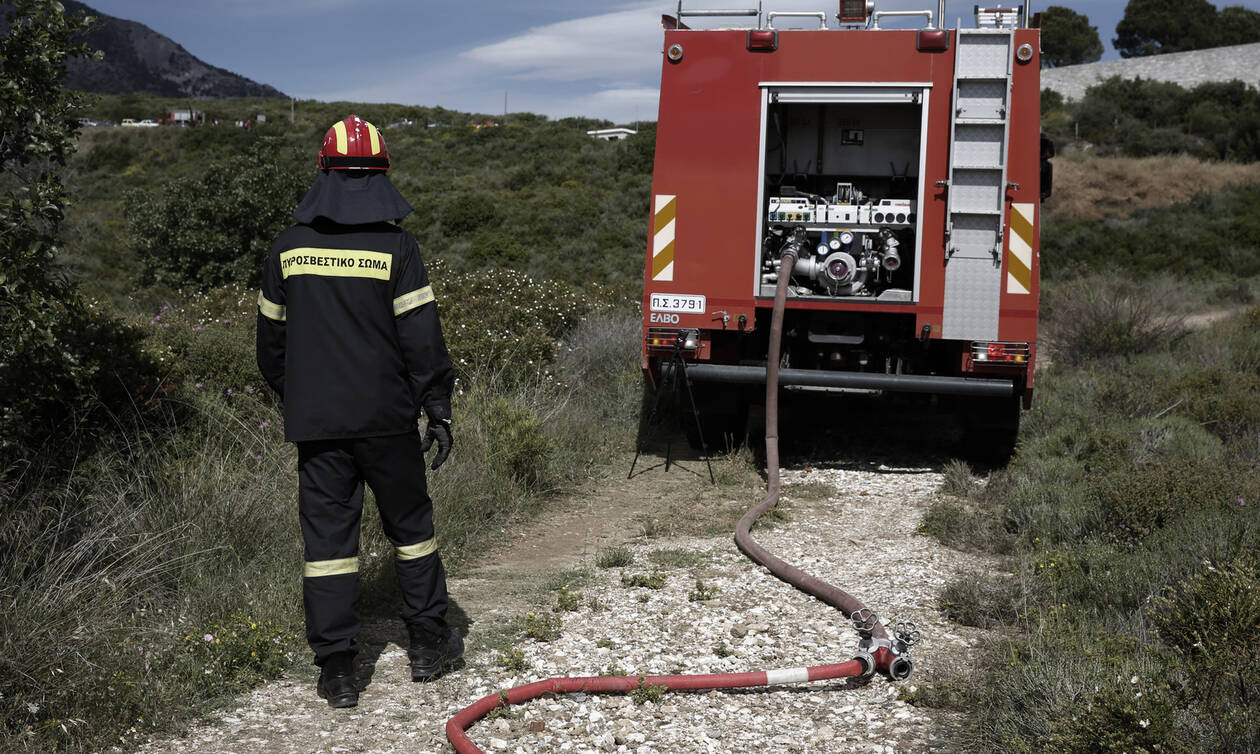 Fire Brigade Chief declares highest state alert against potential wildfires