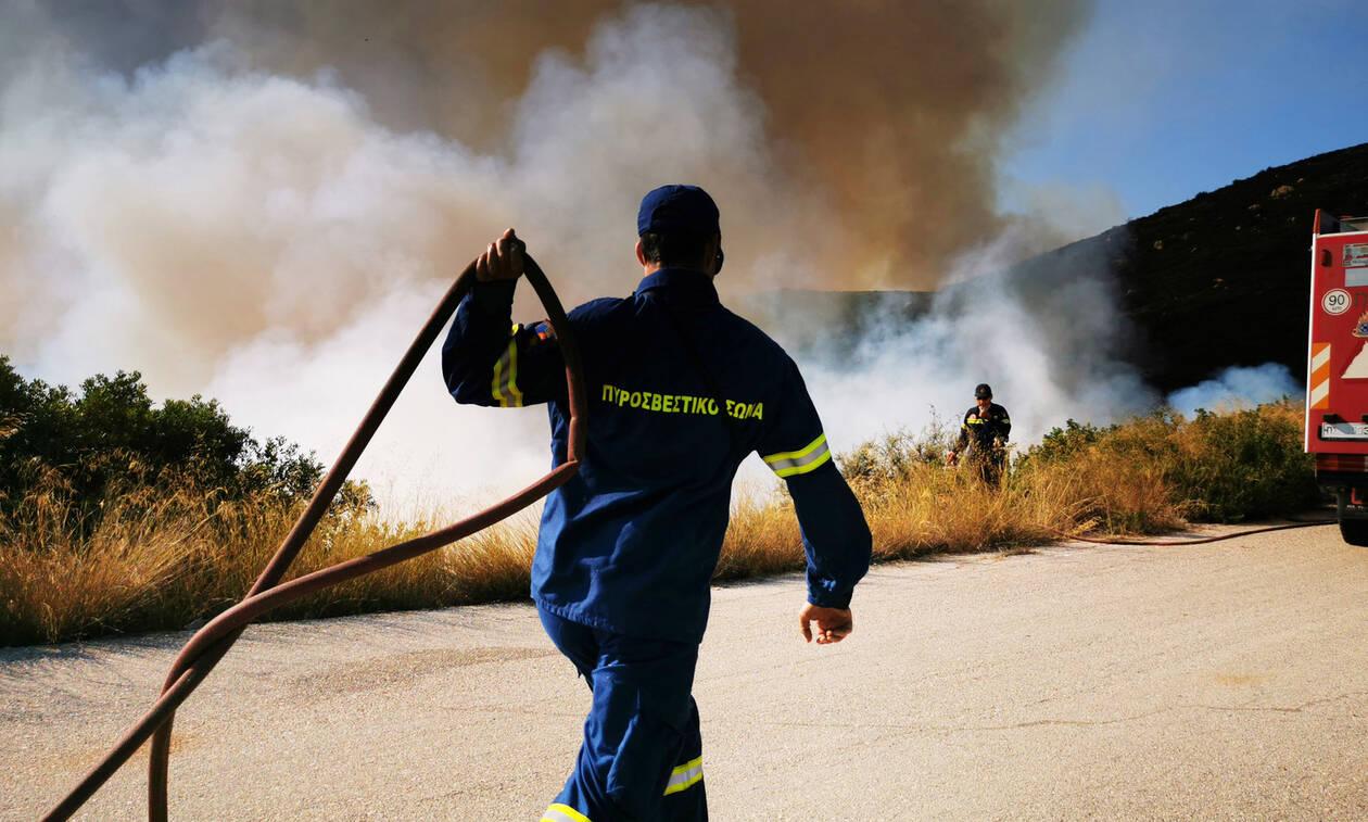 Wildfire on Elafonissos