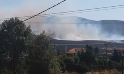 Φωτιά Μαραθώνας: Πληροφορίες ότι ξεκίνησε από οικία όπου εκτελούνται εργασίες