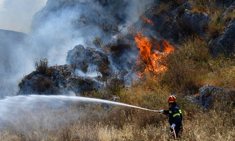 Φωτιά στην Ελαφόνησο: Οριοθετήθηκε η πυρκαγιά – Σε «κόκκινο» συναγερμό η Πυροσβεστική (pics+vids)