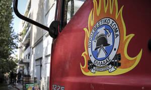 Θεσσαλονίκη: Φωτιά στους Ελαιώνες Πυλαίας