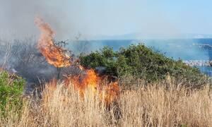 Φωτιά στην Κεφαλονιά (pics)