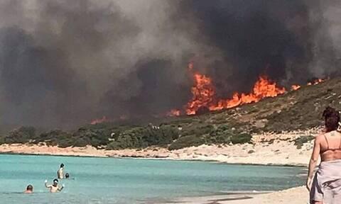 Φωτιά στην Ελαφόνησο - Αποκάλυψη: Έτσι κατέγραψε ο δορυφόρος την πυρκαγιά