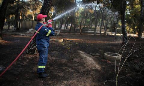 Φωτιά ΤΩΡΑ στο Μαραθώνα: Υπό μερικό έλεγχο η πυρκαγιά στο Ζούμπερι