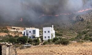 Φωτιά Ελαφόνησος: Τρέχει προς τη θάλασσα ο κόσμος – Συγκλονιστικές εικόνες και βίντεο