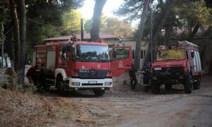 Σε επιφυλακή οι αρχές για πυρκαγιές: Ποιες περιοχές θα είναι στο «κόκκινο» τη Δευτέρα