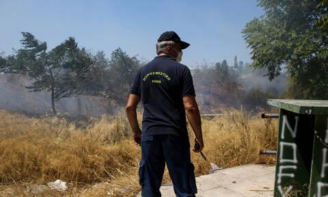 Αχαΐα:Φωτιά στην Άρλα