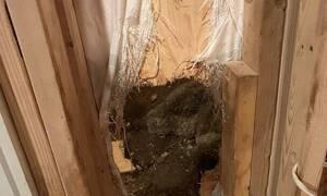 Έπαθαν ΣΟΚ όταν άνοιξαν την πόρτα του σπιτιού τους - Τι βρήκαν;