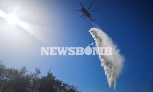 Φωτιά Υμηττός: Κάτοικος της Παιανίας περιγράφει το χρονικό της πυρκαγιάς
