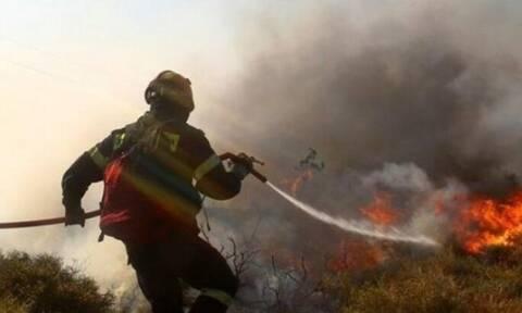 На Кипре из-за пожара в пригороде Лимассола перекрыта трасса