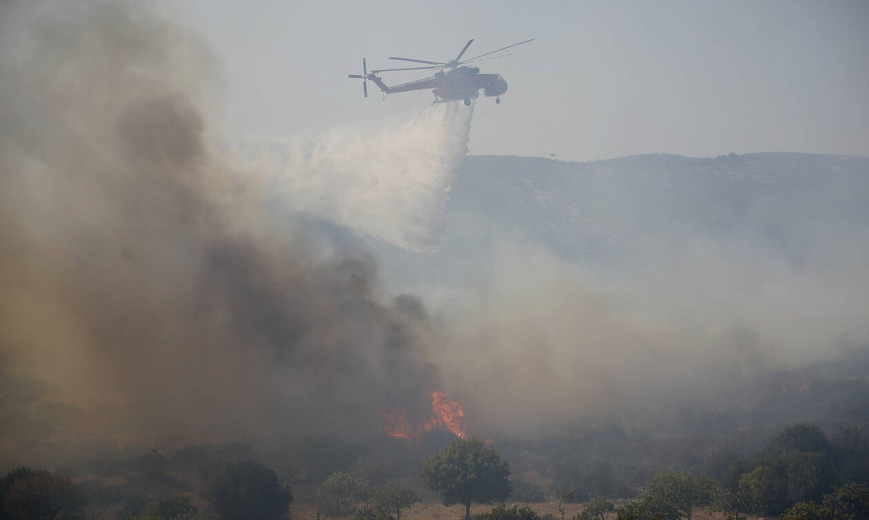 New tourist arrivals on Elafonissos after the wildfire