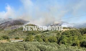 Συναγερμός στην Πυροσβεστική: Φωτιά στην Άρτα - Καίγεται δασική έκταση στο Κομπότι