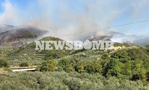 Φωτιά στην Άρτα - Ενισχύθηκαν οι δυνάμεις της Πυροσβεστικής